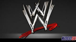 WWE begin push into the fitness industry by hiring celebrity fitness expert Larysa DiDio