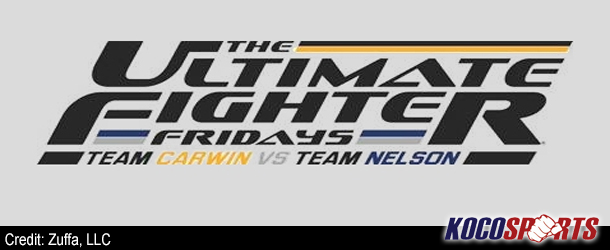 Heavyweights Barry and Del Rosario Stack TUF Finale Card