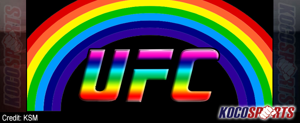 Lesbian MMA fighter Liz Carmouche commends the UFC's encouragement of gay male fighters