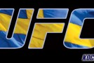 """Alexander """"The Mauler"""" Gustafsson and Anthony """"Rumble"""" Johnson ready to make history in Sweden"""