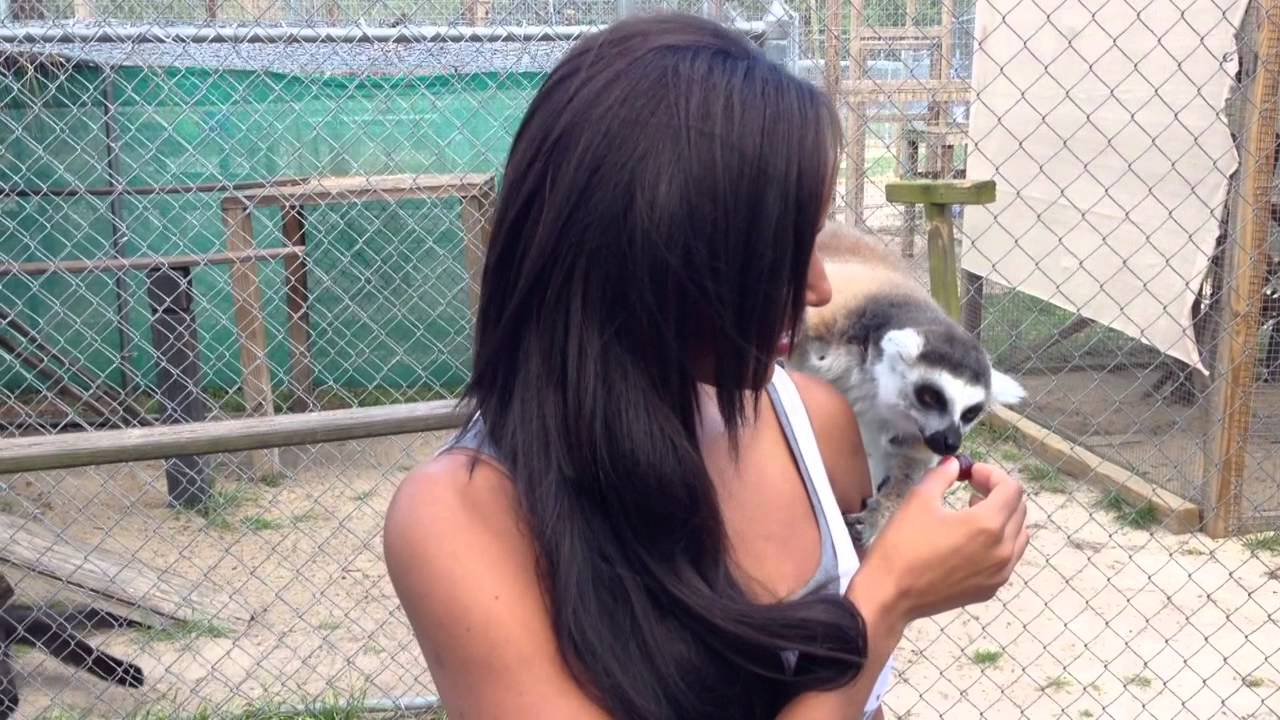 Brandi Rhodes aka NXT's Eden visits a Wildlife Sanctuary  – Video Blog: March 19, 2014