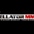 Video: Bellator MMA 162 – 10/22/16 – (Full Show)