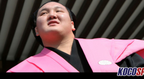 Hakuho and Harumafuji still tied for lead at JSA's Natsu Basho