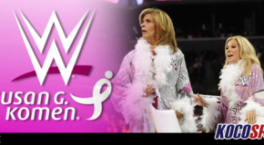 "It's a great PR exercise for WWE, but what exactly does Susan G. Komen do ""for the Cure""?"