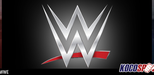 WWE file a motion in US District Court to block long-term concussion damage lawsuits